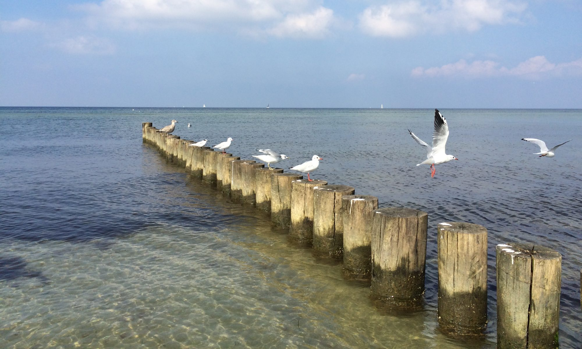 Ostseetraum Insel Poel