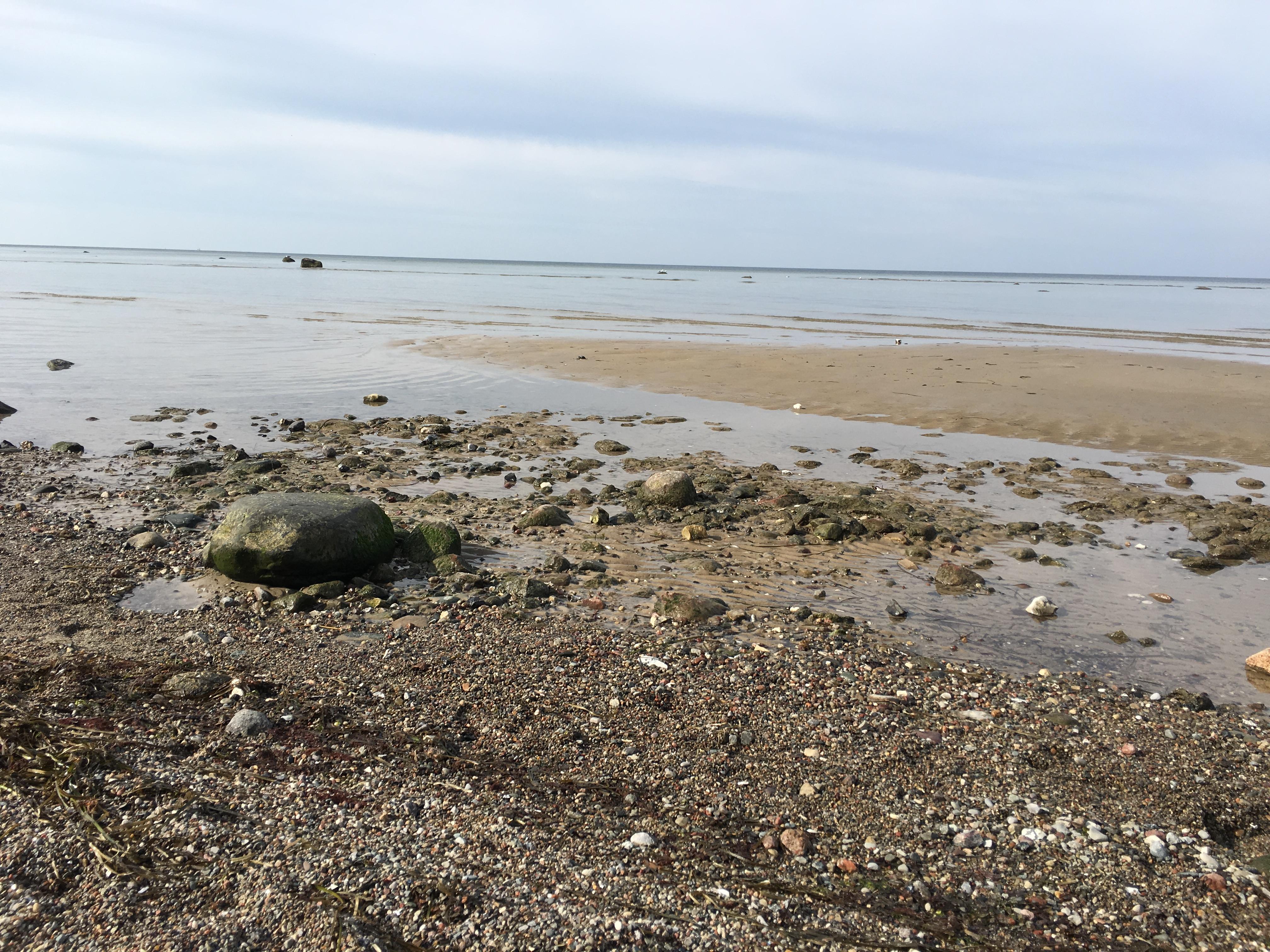 Ostseetraum Auf Der Insel Poel Unsere Ferienwohnungen Das